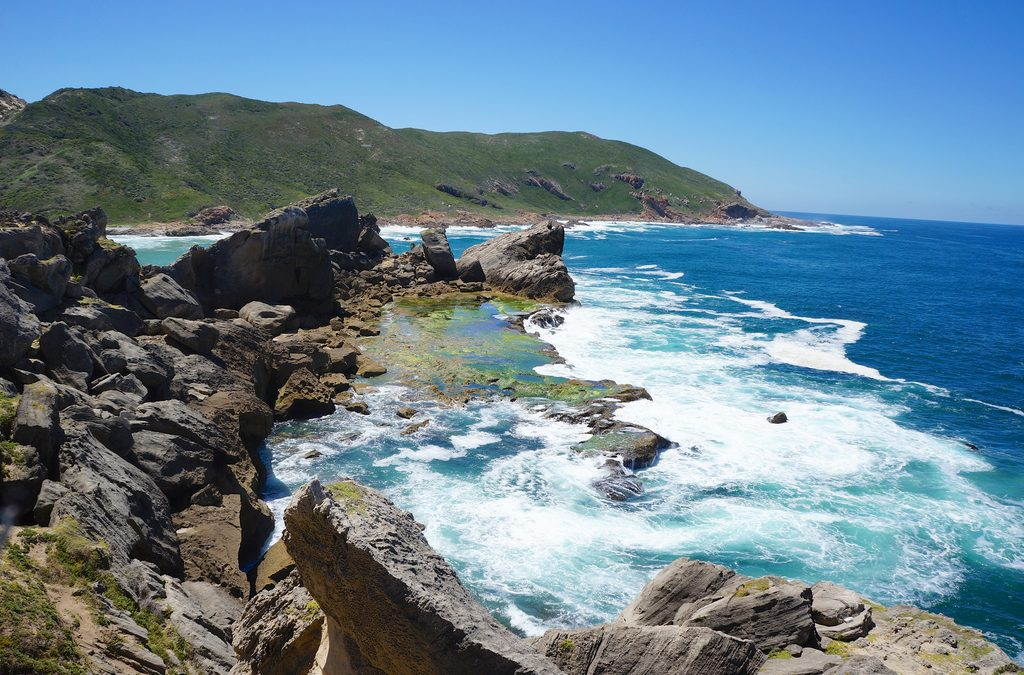 Fun Things To Do In Plettenberg Bay